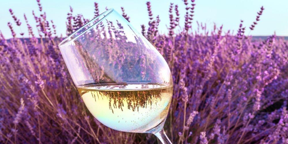 Identificar los aromas de los vinos de Rioja