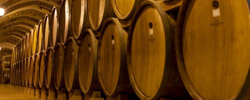 Visita a bodega en La Rioja. Sala de Barricas